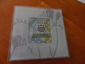Baby Shower Gift Glass Coaster Owl